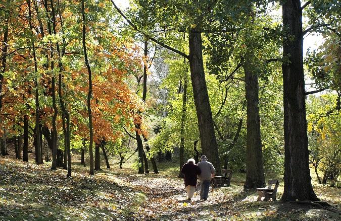 Autumn stroll around Pilsen rivers