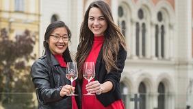 Pilsen festival of wine